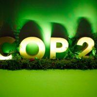 La COP25 en imágenes