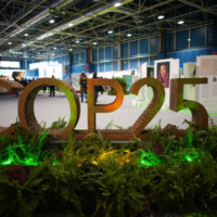 COP 25: Un Fitur de la lucha climática