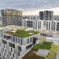 Imitar a la naturaleza para evitar inundaciones en las ciudades