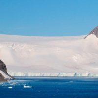 Mejillones, cangrejos y plantas: las invasoras que amenazan a la península Antártica