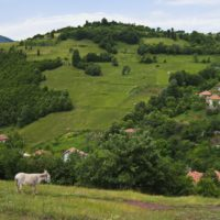 El CSIC lanza un proyecto con empresas para dinamizar la España rural