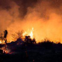 Los incendios calcinaron en España el triple de hectáreas que en 2018