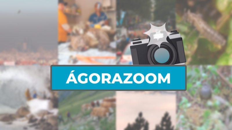 ÁgoraZoom: las imágenes de la semana