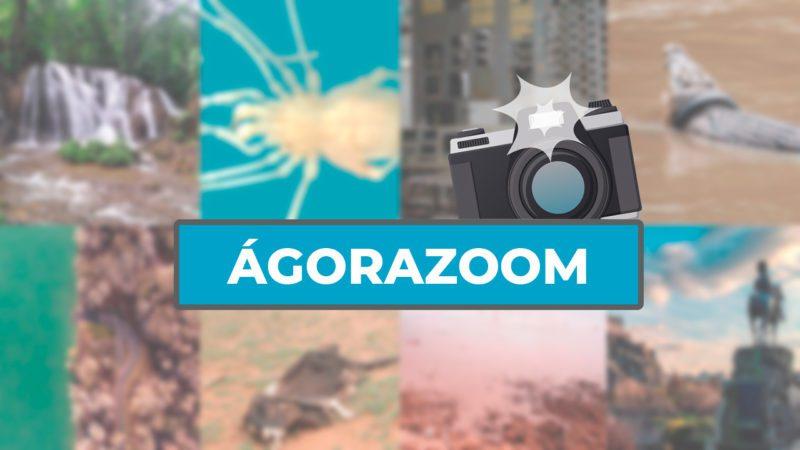 ÁgoraZoom: las mejores imágenes de la semana