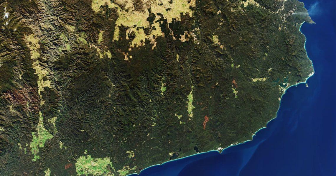 La Huella De Los Incendios De Australia El ágora Diario