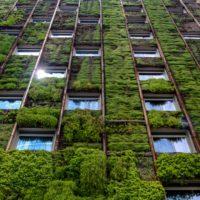 Ciudad sostenible: adaptar la vida urbana al cambio climático