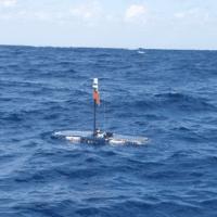 Termina la misión del robot marino que busca ballenas en el Atlántico