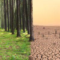 Los desastres de la crisis climática se convierten en serie de televisión