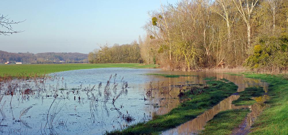 Eventos climáticos extremos como las inundaciones serán más frecuentes e intensos con la crisis climática   Foto: Daniel Jolivet