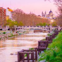 El agua en libertad trae la vida al madrileño río Manzanares