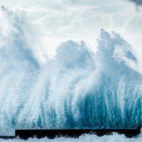 Cambio climático: adaptarse o morir