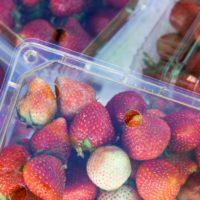 Un nuevo envase biodegradable y comestible alarga la vida del alimento