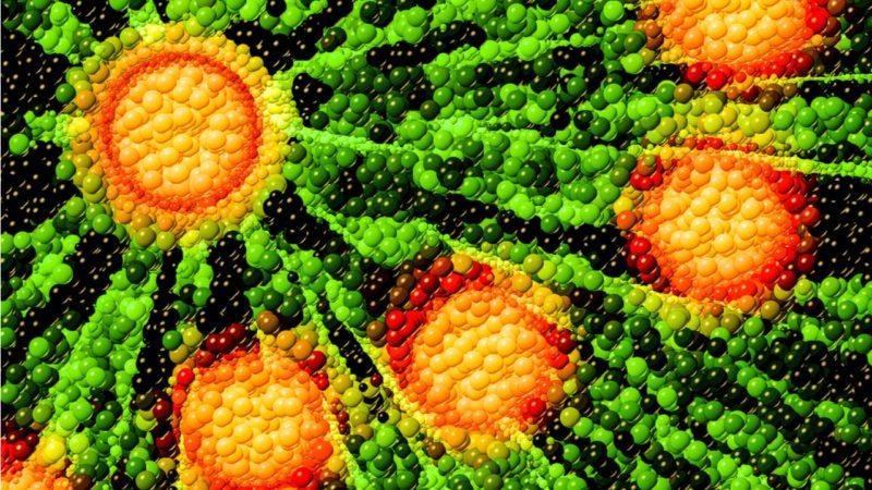 Una tecnología basada en bacterias genera electricidad 'de la nada'