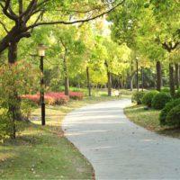 Una visita semanal a espacios verdes reporta beneficios físicos y psicológicos