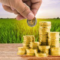 Arranca el primer consejo de Agricultura presencial sin un presupuesto para la PAC