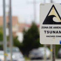 Se cumplen 10 años del tsunami que cambió la percepción de Chile