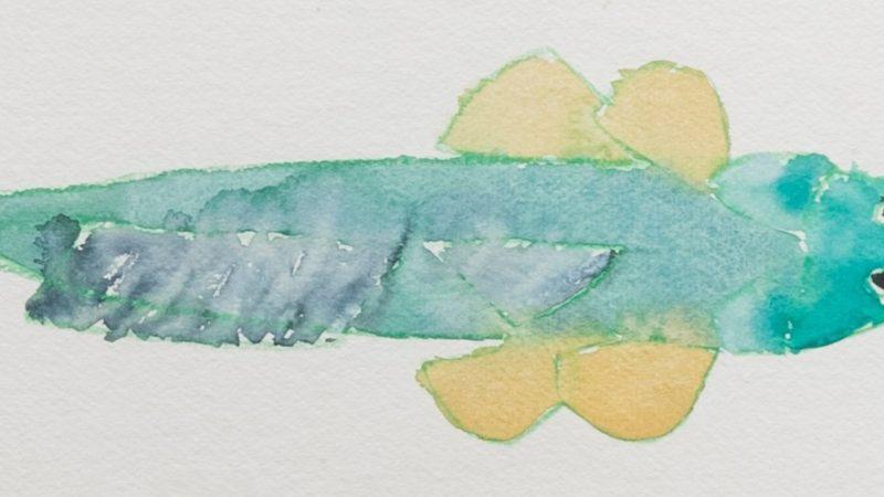 El océano creativo de Joan Jonas