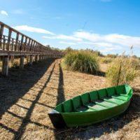 Parques Nacionales reactiva los bombeos de agua en las Tablas de Daimiel