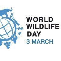¿Por qué se celebra el 3 de marzo el Día Mundial de la Naturaleza?