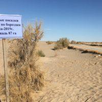 Lo que queda del Mar de Aral recibe un poco de agua en los últimos años