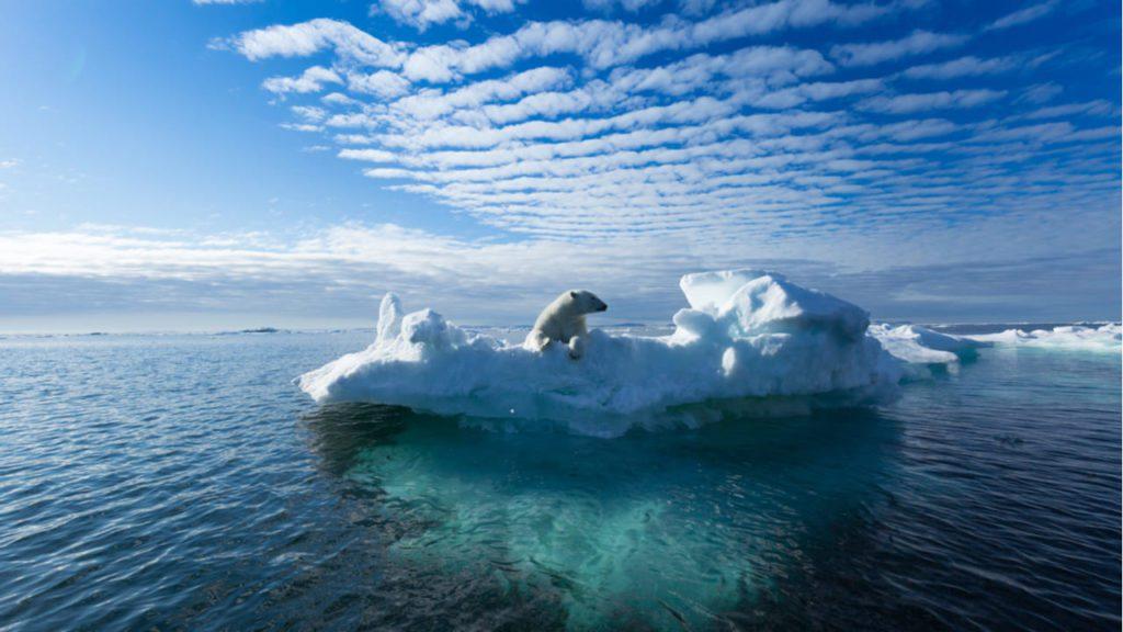 polos, Groenlandia
