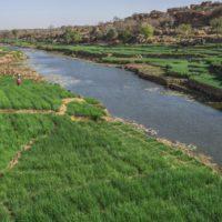 Agropoetas que no dependen de la lluvia para cultivar