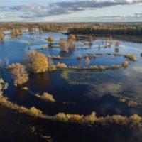 Europa propone devolver a los ríos sus zonas inundables… si es posible