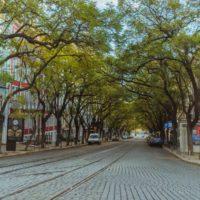 Portugal intenta vencer el coronavirus con responsabilidad ciudadana