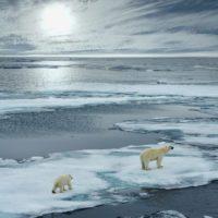 El Ártico, condenado a no tener hielo para el verano del 2050