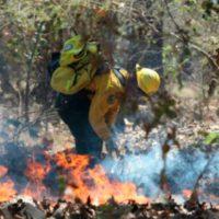 Las llamas devoran el Parque Nacional 'Cañón del Sumidero'