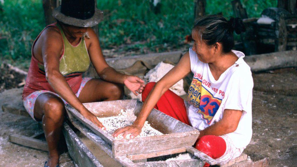 Los pueblos indígenas de la Amazonia que ahora se enfrentan al coronavirus viven en constante amenaza por la invasión de sus tierras   Foto: World Bank