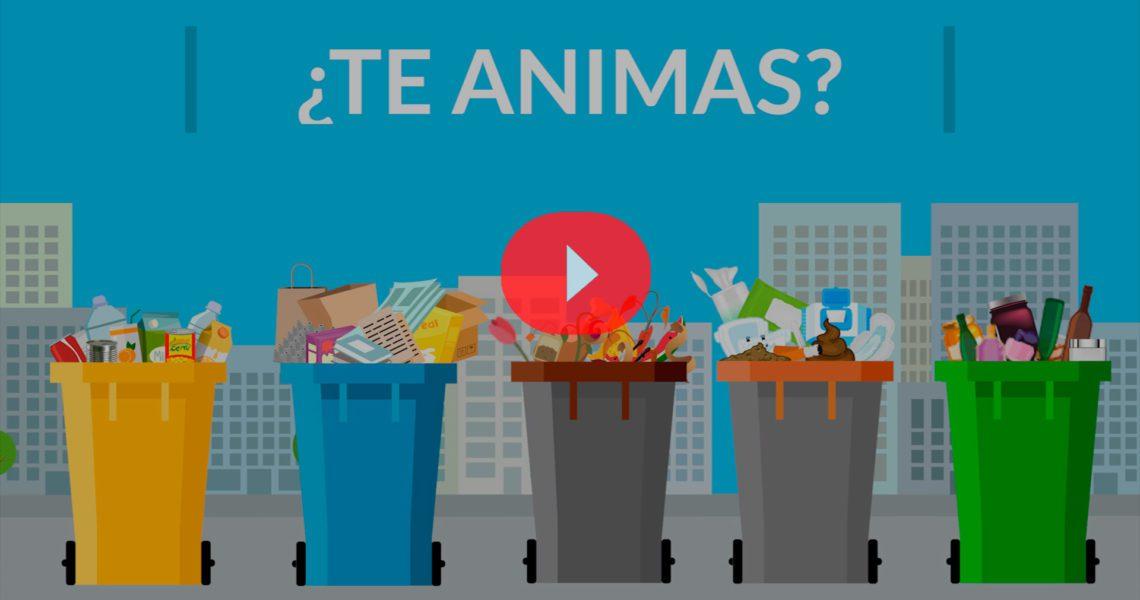 Guía completa sobre cómo reciclar