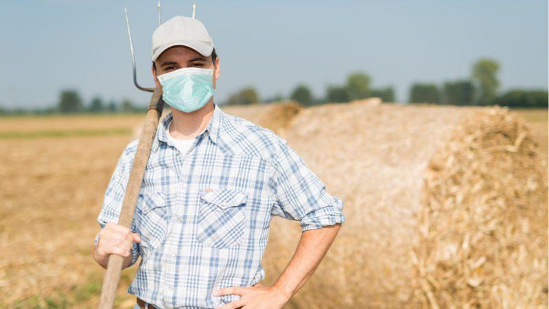 Paisajes de la batalla (VII): el sector agrícola