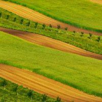 La agricultura, moneda de cambio para la falsa Europa