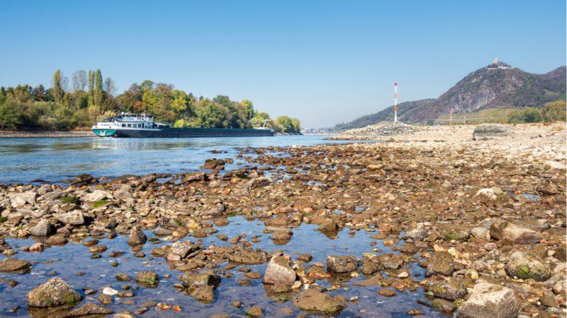 Europa se reseca: en 2019 hubo niveles mínimos de humedad en el suelo