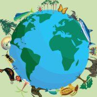¿Cuánto sabes sobre biodiversidad? ¡Demuéstralo!