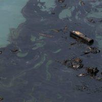 Alerta en Ecuador por un vertido de petróleo en la cuenca del Amazonas