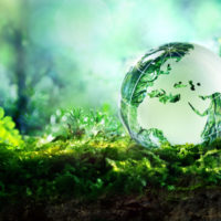 Cómo preservar la salud de la Tierra confinados en nuestras casas