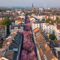 Alemania, entre la restricción y la relajación por el coronavirus