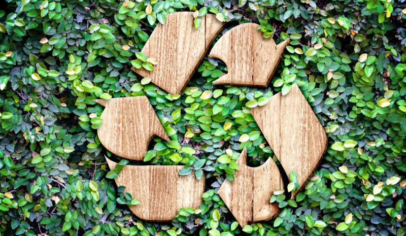 Día Mundial del Reciclaje: el futuro del planeta es circular