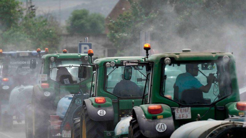 El Gobierno rebaja un 20% los módulos del IRPF para agricultores y ganaderos