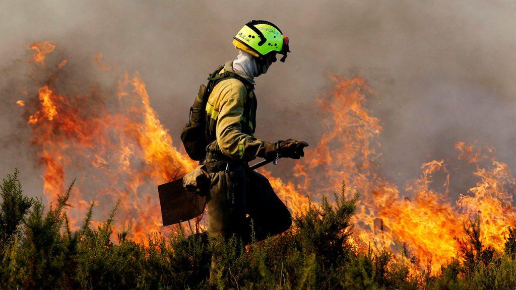 Un bombero forestal lucha contra las llamas en un incendio| Foto: EFE, Kai Försterling