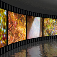 Ecozine, un festival de cine ambiental desde casa