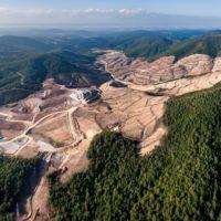 Un tercio de los bosques más antiguos ya ha desaparecido