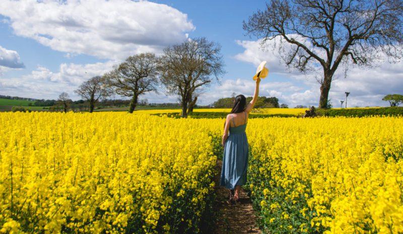Un paseo por el campo para recuperar la esperanza