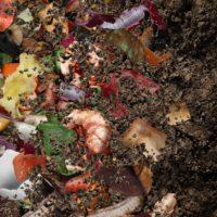 La agricultura circular recicla y reutiliza