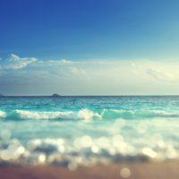 Estudian cómo se comporta el virus en el agua de playas y piscinas