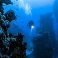 La ciencia alerta de un calentamiento severo de las profundidades oceánicas