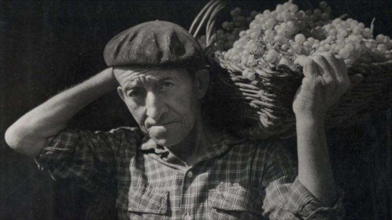 La política agraria desde 1939 a 1975 (I)