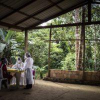 La deforestación de la Amazonía se acelera a pesar del coronavirus